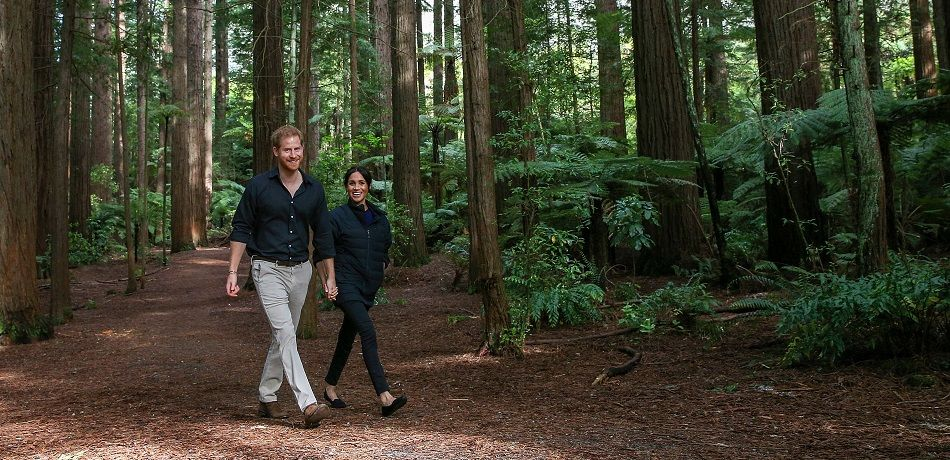 Prince Harry and Meghan Markle Walk on a Forrest Path
